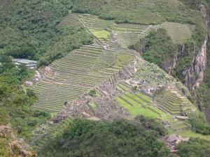 1064-PeruValleSagradoWaynaPicchu-dia30