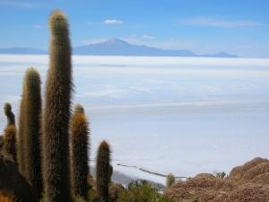 0473-BolivSalarDeUyuniIslaIncahuasiVulcaoTunupa(5400mts)-dia14