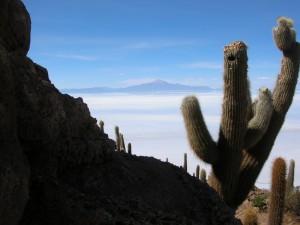 0477-BolivSalarDeUyuniIslaIncahuasiVulcaoTunupa(5400mts)-dia14