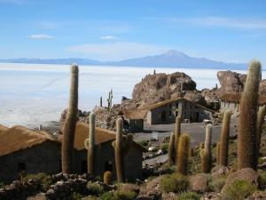 0480-BolivSalarDeUyuniIslaIncahuasiVulcaoTunupa(5400mts)-dia14